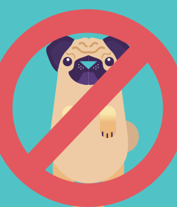 Remove pewdiepug google play david zobrist